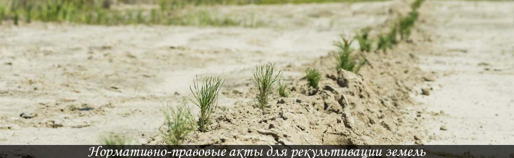 рекультивация земель
